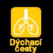 Dýchací cesty